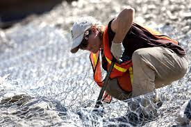 construction worker description duties and salary