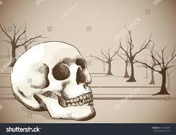 hand sketched skull vintage feel stock vector 113296693 shutterstock