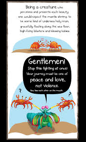Until One Has Loved An Animal Quote by Why The Mantis Shrimp Is My New Favorite Animal The Oatmeal