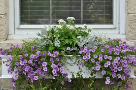 Window Flower Boxes Just So Lovely A Window Box Tutorial