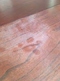 how to remove white heat spots from wood furniture how to remove heat stains from wood frugally