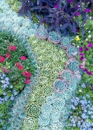30 captivating backyard succulent gardens you can easily diy diy