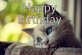 Happy Birthday Love Meme - krystal s birthday quickmeme