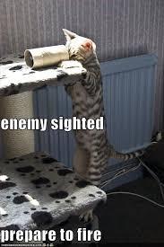 Pew Pew Pew Meme - image 11516 pew pew know your meme