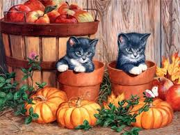 cute cat halloween wallpaper hd wallpapers and high quality pictures cats and kittens part