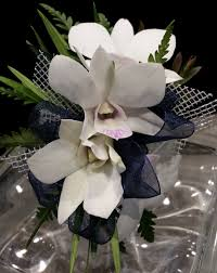 white orchid corsage dress blues white orchid and navy wrist corsage in newton ma