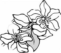 flowers to color coloring pages part 2