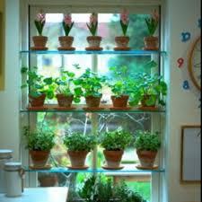 kitchen window shelf ideas 16 best kitchen shelf sink images on kitchen