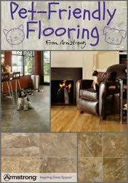 Best Flooring For Pets Want The Best Pet Friendly Flooring What Works Best For Cats And