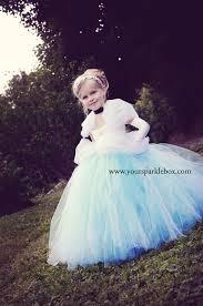 cinderella tutu dress by your sparkle box