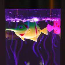color changing lava l colour change sensory bubble fish l