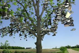 shoe trees in michigan and the rumors that surround them mlive