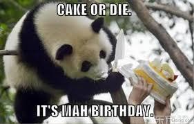 Panda Meme - 80 cute panda memes