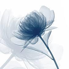 white and blue flowers white and blue flower painting