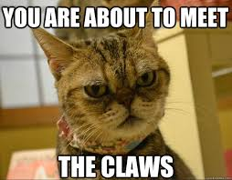 Angry Meme Cat - you are about to meet the claws angry cat quickmeme