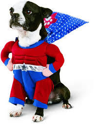 Extra Large Dog Halloween Costumes 53 Funny Dog Halloween Costumes Cute Ideas Pet Costumes