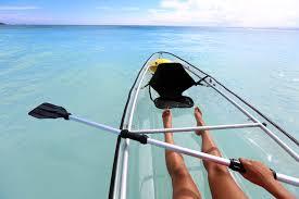 clear kayak marine walk