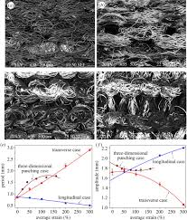 three dimensionally deformable highly stretchable permeable