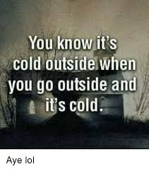 Funny Cold Meme - 25 best memes about you know its cold outside when you go