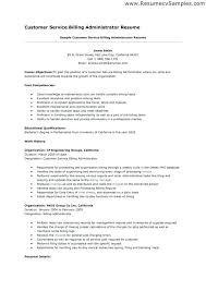 Core Qualifications Examples For Resume Sample Resume Objectives Resume Objectives For It Professionals