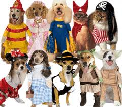 Pet Halloween Costumes Pet Halloween Costumes Buy Halloween Costumes At Extreme