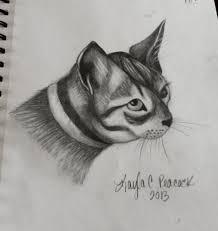 animal sketch sketchbook