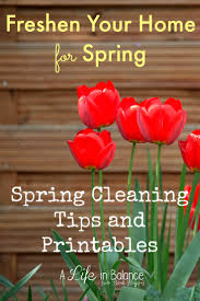 Spring Home Tips Spring Cleaning Tips And Tricks Mommy Moment