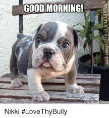 Memes Good Morning - good morning meme crunch com nikki lovethybully meme on