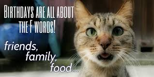 Funny Cat Birthday Meme - the most important things in life