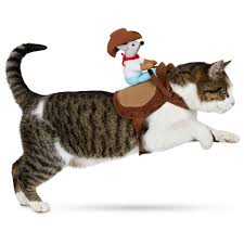 dog halloween costume halloween costumes costumes for cats and dogs glamour