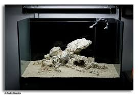 Reef Aquascape Designs Goldenscape Landscapes How To Build A Reefscape