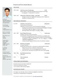 professional resume template word document resume word download free download it professional resume word