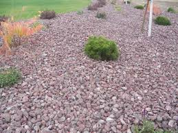 Red Landscape Rock by Montana Red Rock Landscape Wolverine Rock And Mulch