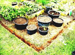 ideas about small vegetable gardens on pinterest gardening