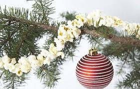 10 edible decorations for your tree
