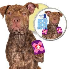 american pit bull terrier lab mix pit bull skin care boo boo butter all natural herbal dog balm