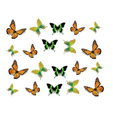 fashion 3d designs colorful bow butterfly ties nail