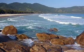 Forest And Waves State Of by Best Beaches In Brazil Travel Leisure