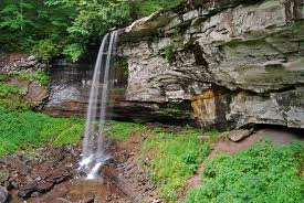 West Virginia forest images File flickr ggallice lower falls monongahela national forest jpg