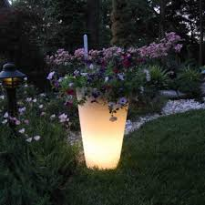 Outdoor Pots And Planters by How To Make Your Planters Glow In The Dark Do It Yourself Fun Ideas