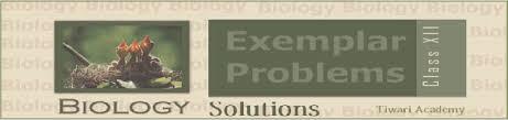 ncert exemplar problems class 12 biology t academy