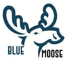 blue moose wedding band bluemoose bluemooseband
