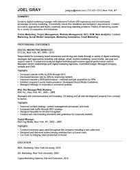 Sales And Marketing Resume Sample by Digital Marketing Manager Free Resume Samples Blue Sky Resumes