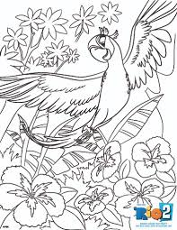 free printable sports coloring pages coloring page