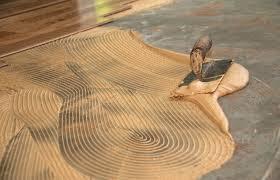 Globus Cork Reviews by Sealed Cork Floor Floor Design Ideas