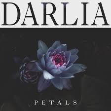 darlia u2013 dear diary lyrics genius lyrics