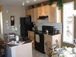 Kitchen Neutral Colors - great neutral kitchen cabinet colors 28 to your interior design