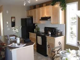 Neutral Kitchen Cabinet Colors - fantastic neutral kitchen cabinet colors 58 to your small home