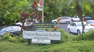 Hawaiian Tropical Botanical Garden by The Role Of Botanical Gardens Transition Town Payson