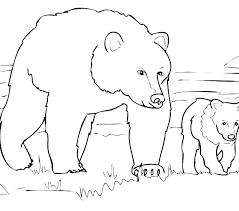 coloring pages animals hibernating hibernation coloring pages s s s hibernating bear coloring pages